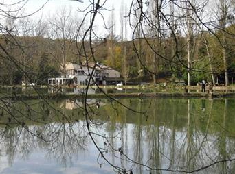 étang de Bajamoux
